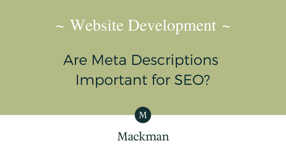 What are Meta Descriptions?